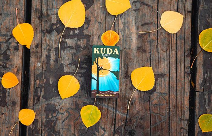 KUDA-19